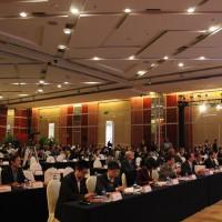 В зале - многочисленные участники форума 大厅里的众多与会者
