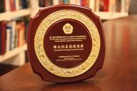 """""""跨文化交流促进奖""""奖牌 Награда «За содействие международным культурным обменам»"""