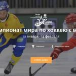 Чемпионат мира  по хоккею с мячом 2016