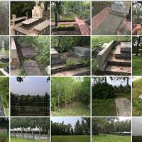 墓区条件评估Оценка состояния захоронений
