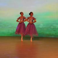 芭蕾拨奏曲《西尔维亚》之变曲Вариация из балета «Сильвия» Пиццикато