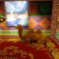 维吾尔族展厅Павильон «Малая народность – уйгуры»