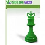 Международный открытый интернет-турнир по шахматам