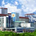 VIII Международный интернет-конкурс по русскому языку (ВГУЭС)