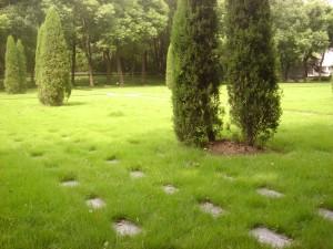 Вид кладбища (Западная сторона)